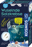 Kosmos Fun Science Wuselnde Salzkrebse